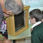 Beekeeping workshop 1
