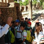 Visit to the Roman Theatre and the Alcazaba in Málaga 7