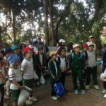 Botanical Garden Year 3 - 1