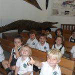 Crocodile Park Nursery 5